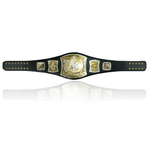 WWE Championship Spinner Replica Title