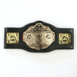 WWE World Heavyweight Foam Belt