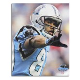 Carolina Panthers Steve Smith Poster